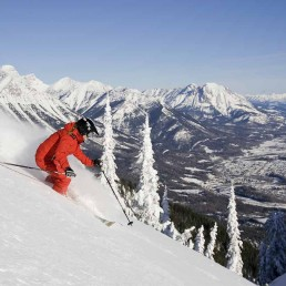 Ski Whistler tour package